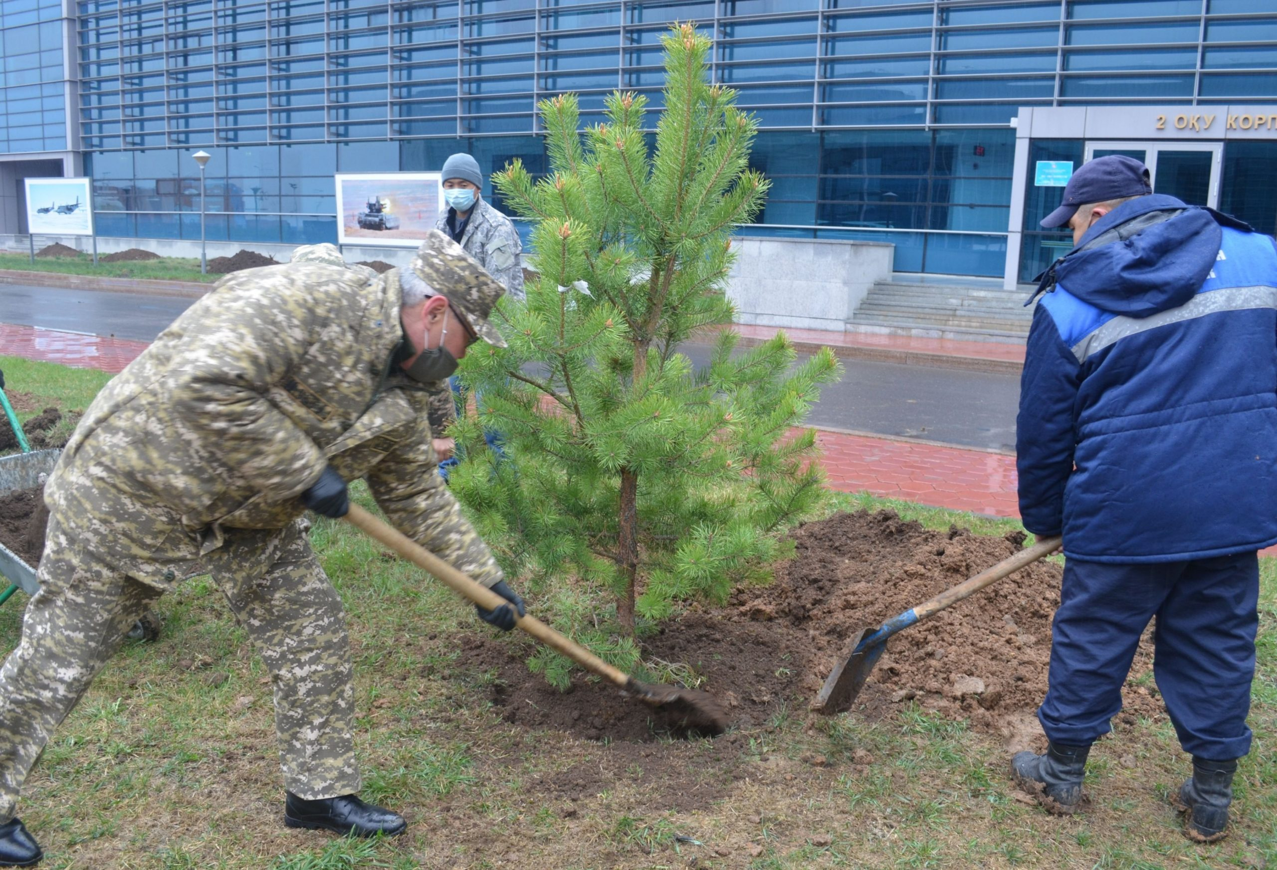 Mass tree planting was held at the national defense University named after the First President of the Republic of Kazakhstan – Elbasy